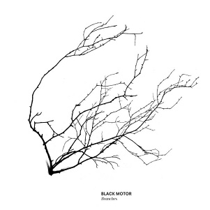CD Black Motor – Branches