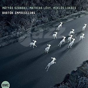 CD Szandai Mátyás, Mathias Lévy, Lukács Miklós – Bartók Impressions